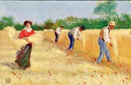 Cartolina Augurale Per Le Case Del Pane Sotto L'alto Patronato Di S.M. La Regina Madre - Lot. 1898 - Landwirtschaft