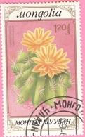 MONGOLIA -Cactuses (1,20) - 1989 - Mongolia