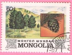 MONGOLIA -Plants (60) - 1982 - Mongolia