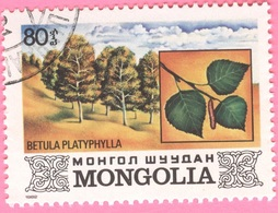 MONGOLIA -Plants (80) - 1982 - Mongolia