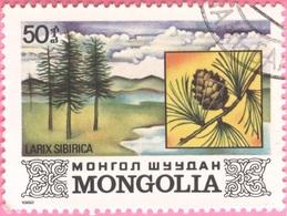MONGOLIA -Plants (50) - 1982 - Mongolia