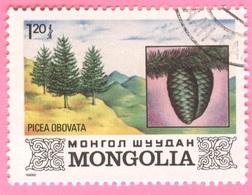 MONGOLIA -Plants (1,20) - 1982 - Mongolia