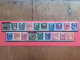 OCCUPAZIONE TEDESCA - LUBIANA - Sovrastampati Nn. 1/19 Nuovi * + Spese Postali - German Occ.: Lubiana