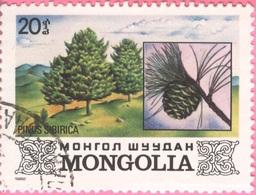 MONGOLIA -Plants (20) - 1982 - Mongolia