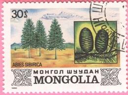 MONGOLIA -Plants (30) - 1982 - Mongolia