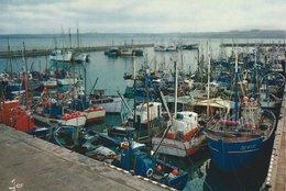 29 - ILE-TUDY - Bateaux Dans Le Port - Ile Tudy