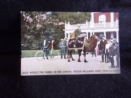 Etats - Unis .Rhode Island . Providence Roger Williams Park .The Camel Of The Shrine .Voir 2 Scans . - Providence