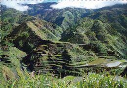 1 AK Philippinen * 2000 Jahre Alte Reisterrassen In Der Provinz Banaue * Seit 1995 UNESO Weltkulturerbe * - Philippines