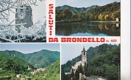 BRONDELLO  AUTENTICA 100% - Cuneo