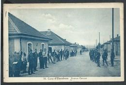 +++ CPA - Camp D' ELSENBORN - Avenue Geruzet - Soldat Militaire Armée  // - Bütgenbach