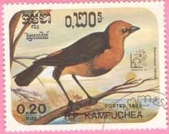 KAMPUCHEA  - Birds - Xanthopsar Flavus - 1985 - Kampuchea