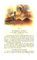Der Ziergarten Am Hause/ Artikel, Entnommen Aus Kalender / 1907 - Books, Magazines, Comics
