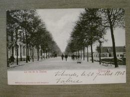 Cpa Vilvorde Vilvoorde - La Rue De La Station - Edition VG 42 Avenue Du Midi Bruxelles - Vilvoorde