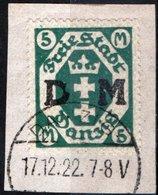 DANZICA, DANZIG, GERMANIA, ANTICHI STATI, 1922, FRANCOBOLLI USATI  Scott O24 - Danzig