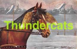 CPA ILLUSTRATEUR  AUGUST MULLER MUNICH ARTIST SIGNED HORSE CHEVAL - Mueller, August - Munich