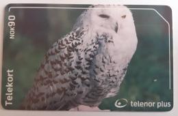 Norway  Snowy Owl  N  250 - Norway