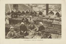 D 29 - CONCARNEAU - Usine De Conserves -  Format 20cm X 29cm - Cliché Lévy & Neurdein - Collections
