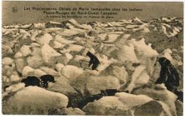 Les Missionnaires Oblats De Marie Immacullée Chez Les Esquimaux Du Nord Ouest Canadien (pk44290) - Unclassified