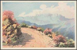 The Mountain Road To Troutbeck, Inyanga, Southern Rhodesia, C.1930s - Newman Postcard - Zimbabwe