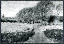 CP   Baelen   ---   Membach  --  Paysage Pittoresque - Baelen