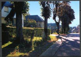 CP   Baelen   ---   Membach  --  Quartier Et Rue Boveroth  --  Emis En 2000 - Baelen