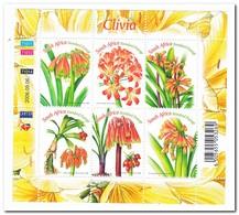 Zuid Afrika 2006, Postfris MNH, Flowers, Plants - Ongebruikt