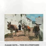 Postcard - Costa Del Sol - Mijas - Typical Scene - Postmarked Malaga - VG - Cartes Postales