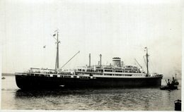 RPPC CARIBIA     CARGO - Comercio
