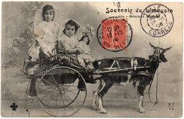 Souvenir Du Limousin - Gracieux Attelage (Attelage Chèvre Et Enfants (104682) - Chiens