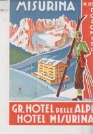 MISURINA ETICHETTA LABEL ETIQUETTE HOTEL GRAND HOTEL DELLE ALPI HOTEL MISURINA - Documenti Storici
