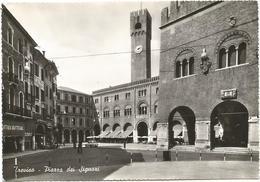 X1607 Treviso - Piazza Dei Signori - Auto Cars Voitures / Non Viaggiata - Treviso