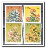 Zuid Afrika 1977, Postfris MNH, Flowers, Plants - Zuid-Afrika (1961-...)