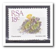 Zuid Afrika 1989, Postfris MNH, Succulents - Ongebruikt