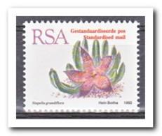 Zuid Afrika 1993, Postfris MNH, Succulents - Zuid-Afrika (1961-...)