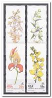 Zuid Afrika 1981, Postfris MNH, Flowers, Orchids - Zuid-Afrika (1961-...)