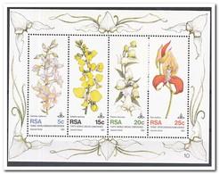 Zuid Afrika 1981, Postfris MNH, Flowers, Orchids - Ongebruikt