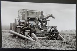 CPA CARTE POSTALE ANCIENNE MOISSONNEUSE BATTEUSE CLAAS COLOMBUS - Tractors
