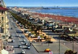 Viareggio - Viali Lungomare E Spiaggia - Formato Grande Viaggiata – E 5 - Viareggio