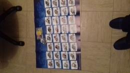 Magnifique  Affichette 75 X50cm (deplie) Joe Bar - Affiches & Offsets