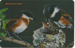 Bosnia Chip Card Birds Oiseaux Oiseau - Bosnia