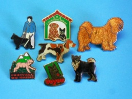 7 PIN'S //   ** CHIEN GUIDE D'AVEUGLE & AUTRES CANINS  ** - Badges
