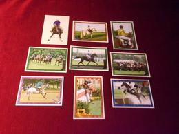 9 STICKERS   PANINI  THEME LE CHEVAL  / HORSE - Cinemania