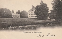 Environs De BILSEN - Château De Zangerhey - Kasteel - Bilzen