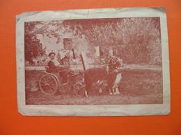 PETAR ZELJKO(Dalmatie)-seit August 1929 REISE UM DIE WELT - Croatie