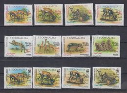 J69. MNH Somalia Nature Animals Wild Animals - Sellos