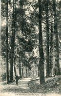 Cpa 88 Plombieres Les Bains Un Sous-bois Dans Le Parc écrite Timbrée Dv - Plombieres Les Bains