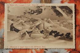ALASKA MISSIONI DELLA COMPAGNIA DI GESU / Old Vintage Postcard  - Laika Dog - Sin Clasificación