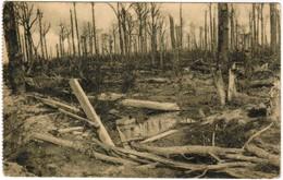 Fôret D'Houthulst 1914-18, Le Massacre D'un Bois (pk44321) - Houthulst