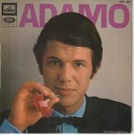 S Adamo Le Néon - Special Formats