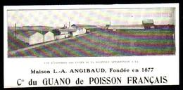 1926  --  LA ROCHELLE  USINE ANGIBAUD  Cie DU GUANO DE POISSON FRANCAIS   3P466 - Non Classés